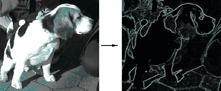 Image Transforms với opencv