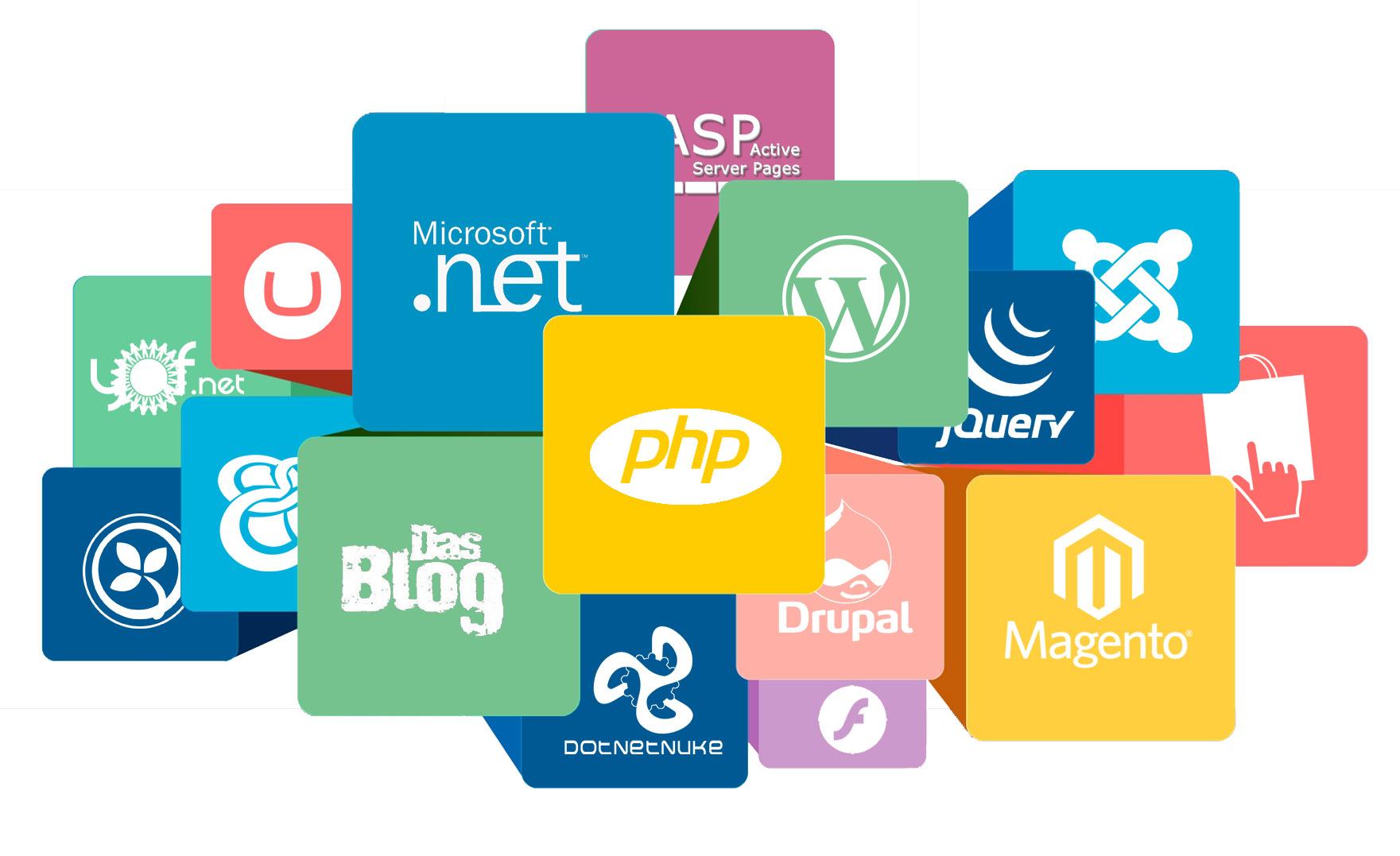 Các cấp độ của nghề làm Web